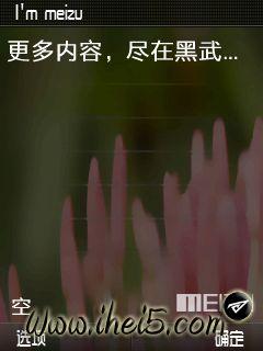 meizu_1.jpg